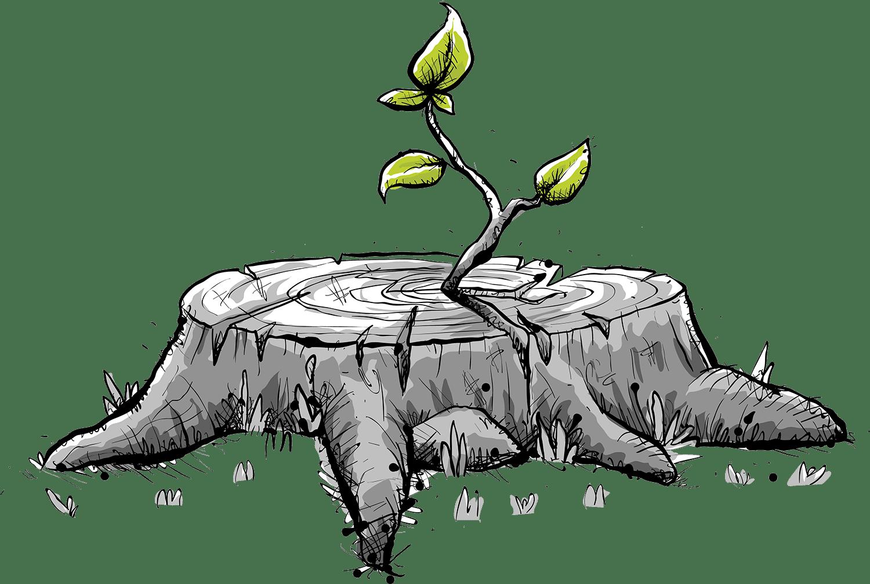 genesis tree